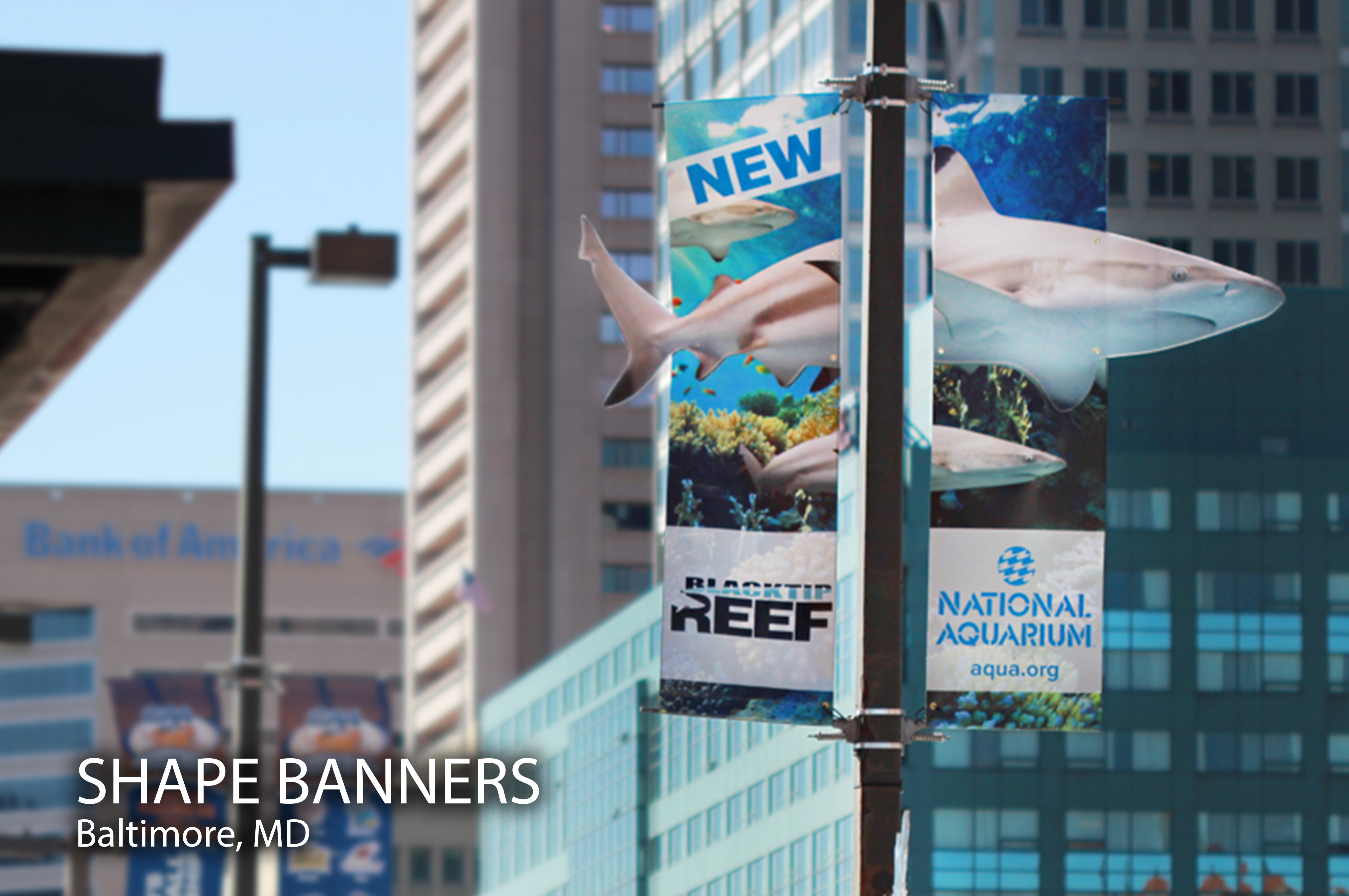 4 Creative Ways to Use Light Pole Banners
